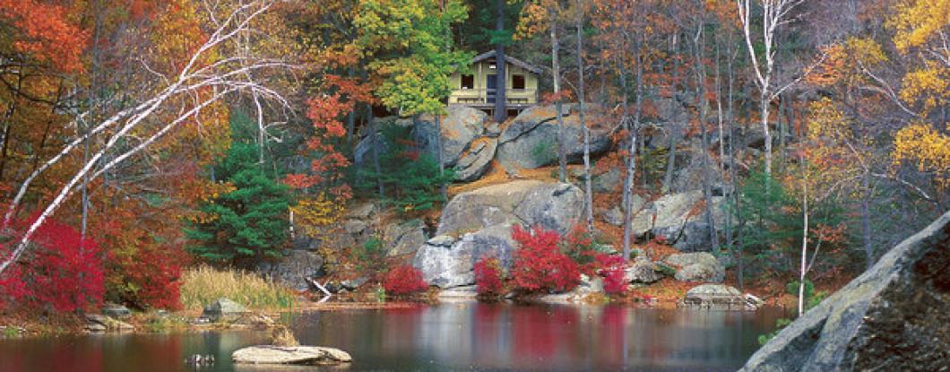 Woodland Cabin Area Activities